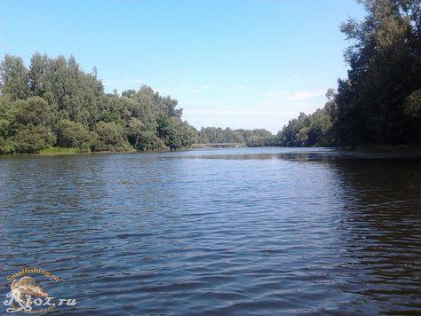 озеро в деревни лечеса