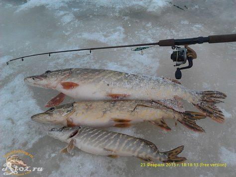 видео о рыбалках зимой в 2012-2013 годах