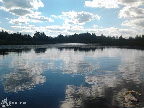 Заросшее озеро 1