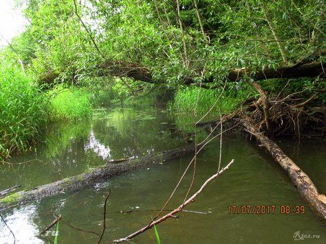 Завал на малой реке