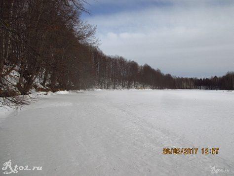 Берег реки Стряна