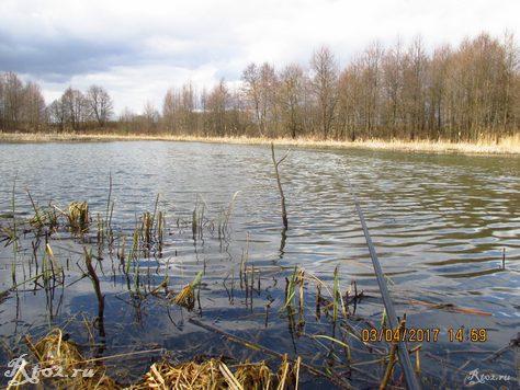 мое место на озере