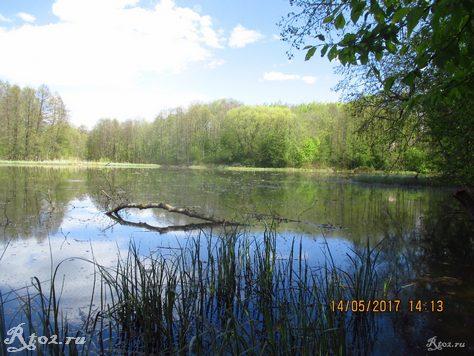 весеннее озеро 4