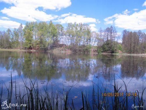 весеннее озеро 5