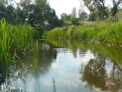 узкое место на реке