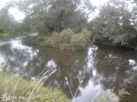остров на реке