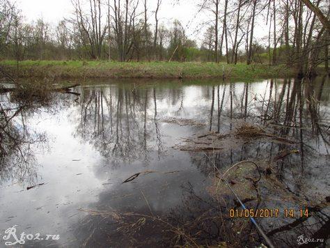 мусор на воде половодной реки