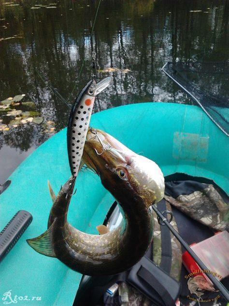 видео о рыбалка на озерах и речках в 2012 году