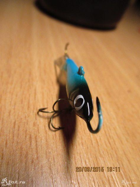 голубой балансир мурена  5