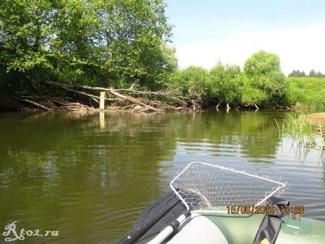 завал деревьев на реке