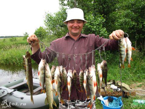 улов хиной рыбы летом на озере 4