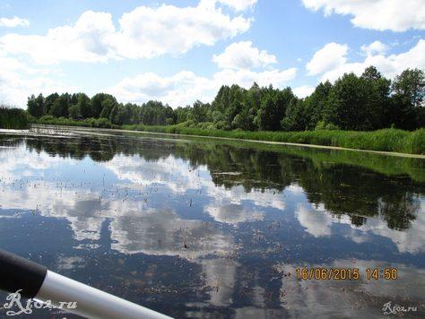 заросшее озеро 325