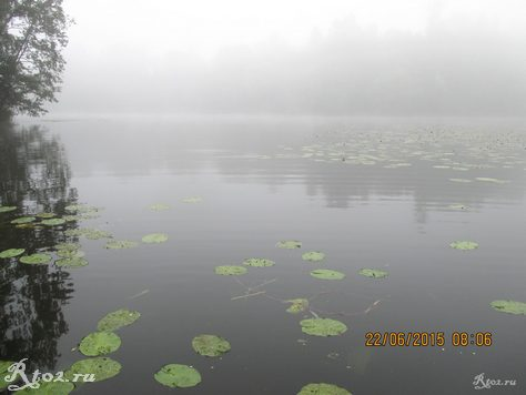 туман утром над озером