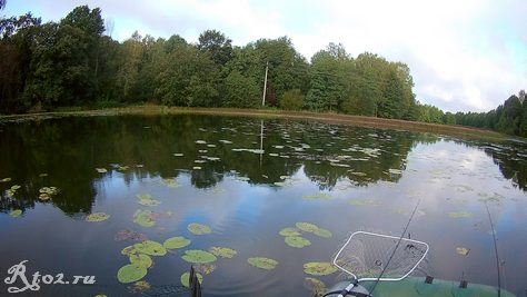 местное озеро 34566