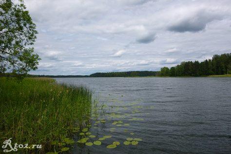 Озеро Рытое Смоленская область