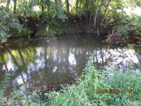 ямка на мелкой реке