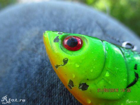 погрызанный щукой раттлин Wlure 2