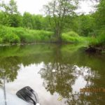 Ловля щуки сплавом на микроречке спиннингом в июне