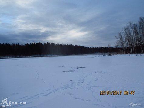 выход из заводи на реке Соложа
