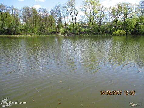 весеннее озеро 1