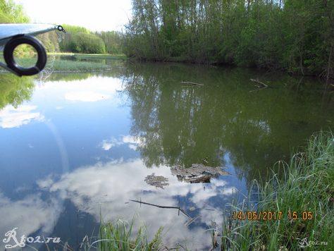 весеннее озеро 6