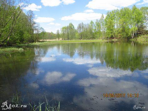 весеннее озеро 3