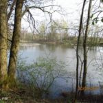 С поплавочкой за белью на местное озеро