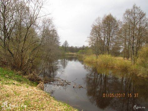 Река во время половодья