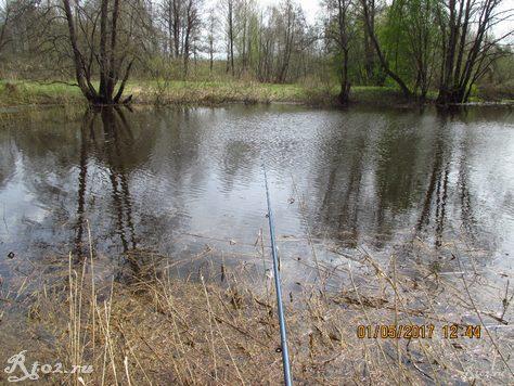 Ловлю рыбу в заводи реки