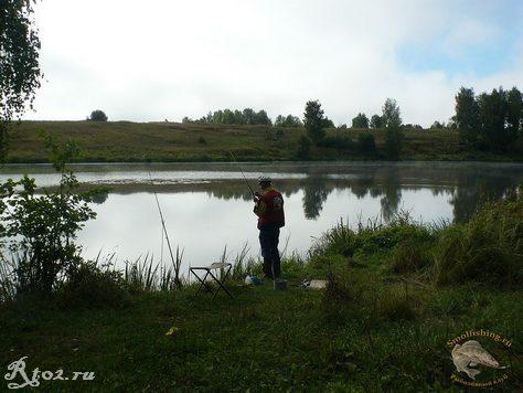 деня ловит белую рыбу
