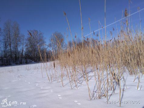в солнечный день на озере в марте