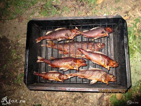 копченая рыба 1
