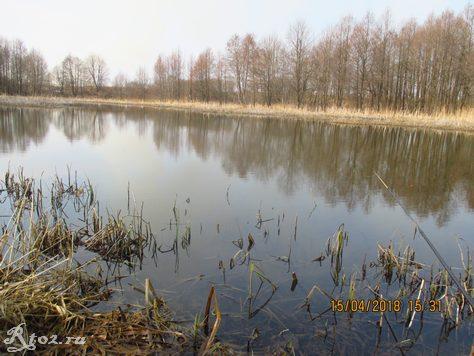 Весеннее озеро. Апрель 2018