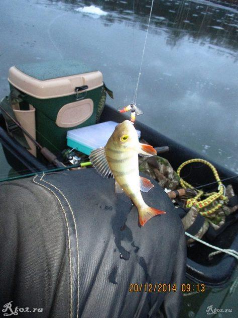 окунь на балду на озере 70