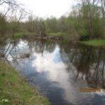 Прогулка весной по речке