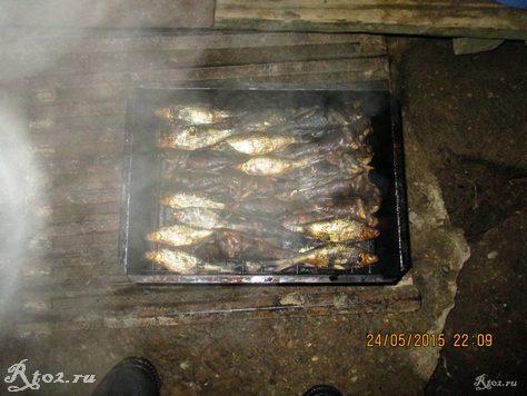 копченая рыба 21