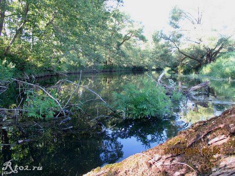 завал на небольшой реке 325