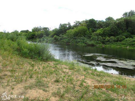 берег реки Днепр