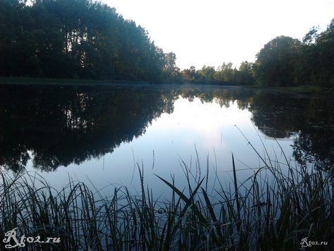 озеро 236