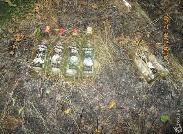 бутылки сангрии