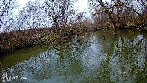 река в ноябре 20184