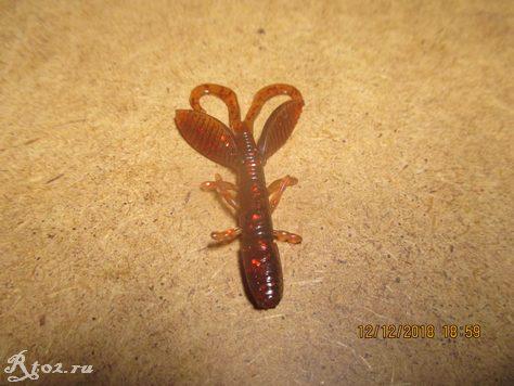 личинка c aliexpress