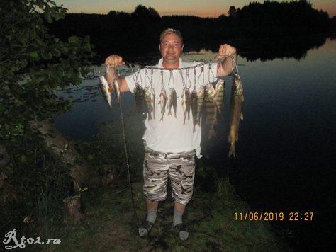 улов окуня на озере
