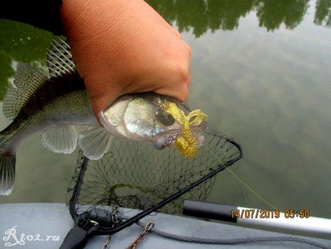 судак на китайского рака от Walk Fish