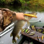 Ловля щуки на малой реке спиннингом в октябре 2019