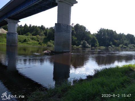 Мост на Днепре. Гусино.