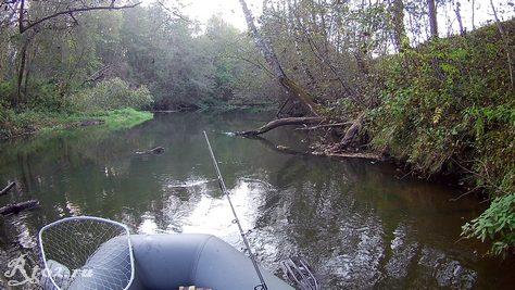 Река 4 октября 2020