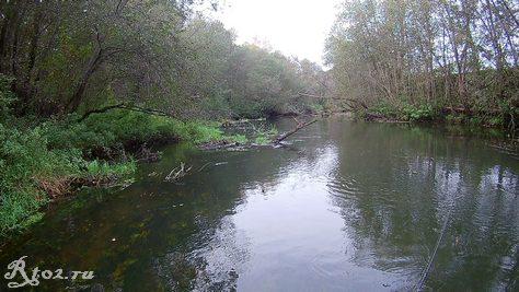 Река осенью в октябре 2020
