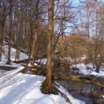 Весенняя прогулка по ручью в марте 2021 г.