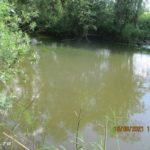 Как я вспоминал детство на речке с поплавочной удочкой в июне 2021 года